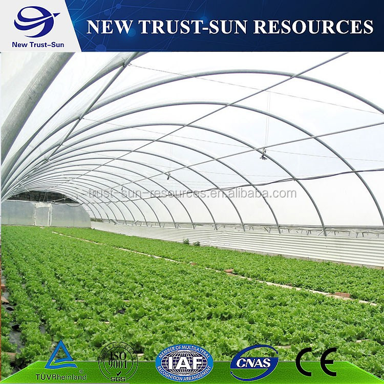 Good quality tempered PVC/PE film greenhouse for vegetable plantation