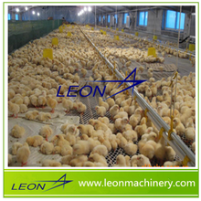 LEON poultry feeding system for chicken cage for steel chicken house