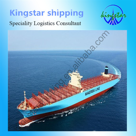 Sea freight forwarder from qingdao china to DAMMAM translator