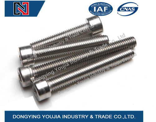 DIN912 Stainless Steel Hexagon Socket Head Cap Screw
