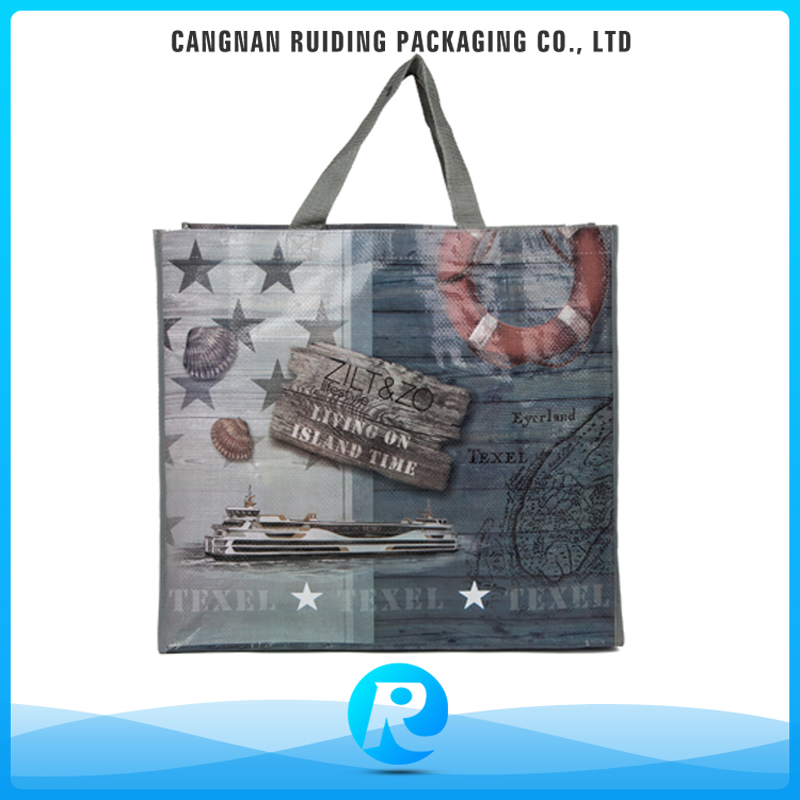 Ruiding Wholesale China Factory SGS Printed Ladies Shopping Tote Bags