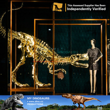 MY Dino-Attractive decoration golden life size dinosaur skeleton
