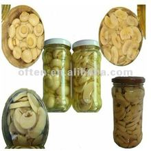 brand name of mushroom canned mushroom brands with hot selling