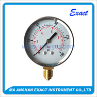 hydraulic and pneumatic dry pressure gauge,ss case and ring,brass connection