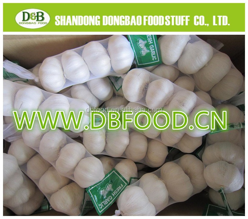 New Wholesale Garlic Price China Fresh Garlic Natural Garlic