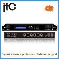 Professional digital speaker audio processor with DSP