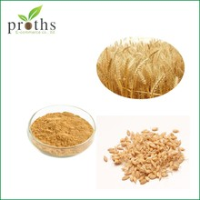 Top Selling 100% Pure Dry Barley Malt Extract