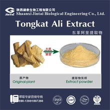free sample tongkat ali extract eurycoma longifolia root extract 200:1