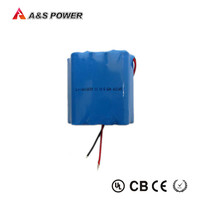 18650 6600mAh lithium ion battery 12V for medical device