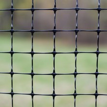 China Deer Fence Netting-the professional plastic netting manufacturer