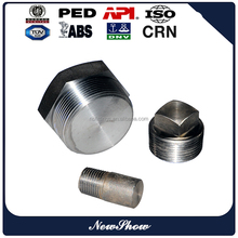 Forged Stainless Steel Threaded NPT Hex/Square/Round Head Plug