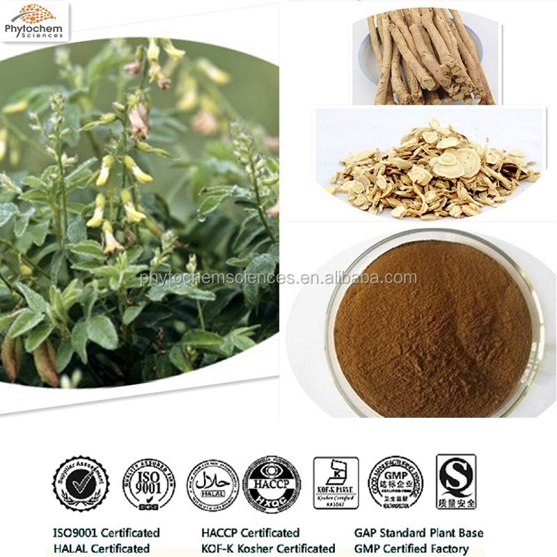 High quality Chinese Astragalus Extract Powder with Astragaloside IV by HPLC