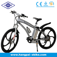 China electric mountain motorbike (HP-E004plus)