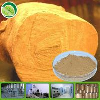 natural testosterone booster tongkat ali extract powder 200:1