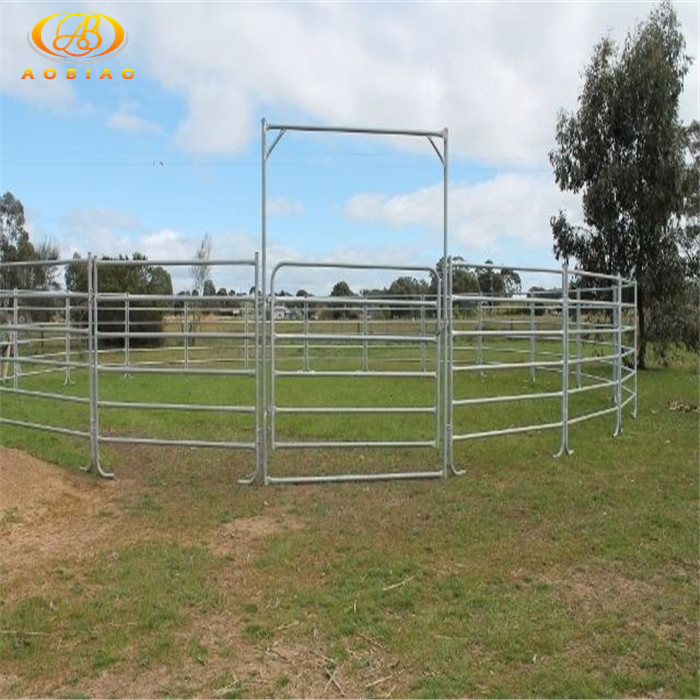 Dragon fruit dryer cattle panel 16 ft
