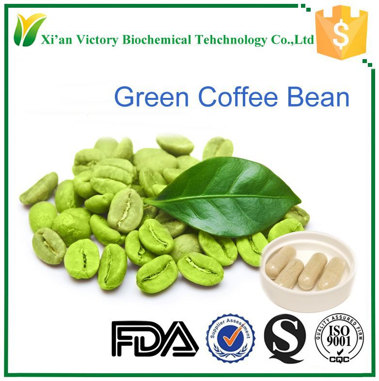 Hot sale green coffe bean extract 50% chlorogenic acid