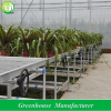 Greenhouse Garden Ebb Flow Rolling Bench