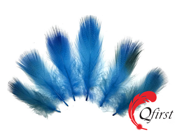 Factory wholesale plumage dyed turquoise blue mallard duck flank feathers