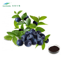 100% natural Blueberry Extract,Bilberry extract powder, Bilberry powder,Anthocyanidin