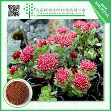 Medicine Traditional chinese rhodiola rosea extract 3% Salidroside