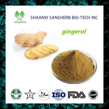 Free sample 5% gingerols hplc ginger root extract with high quality