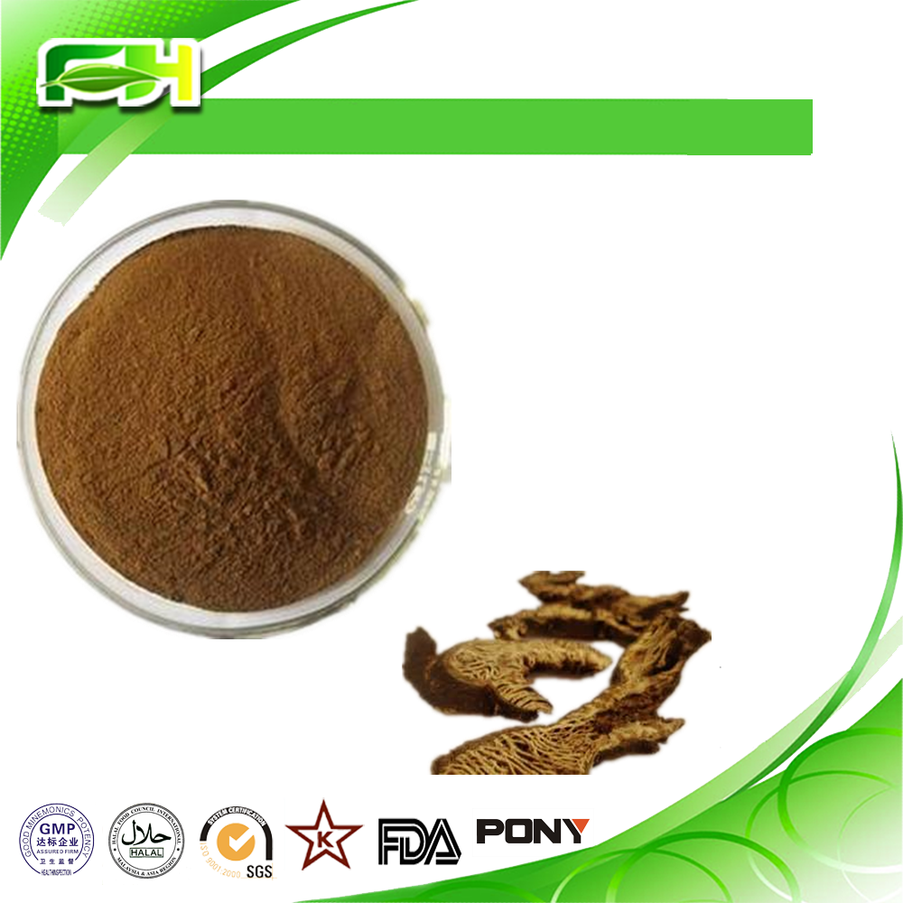 China Supplier 2016 Best Selling Products Actaea Racemosa P.E / Actaea Racemosa Powder / Actaea Racemosa Extract