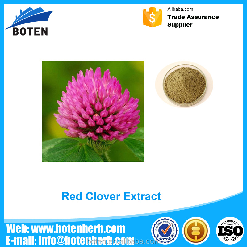 Professional red clover isoflavone manufactured in China