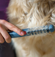 dog grooming equipment/ pet grooming comb as seen on tv