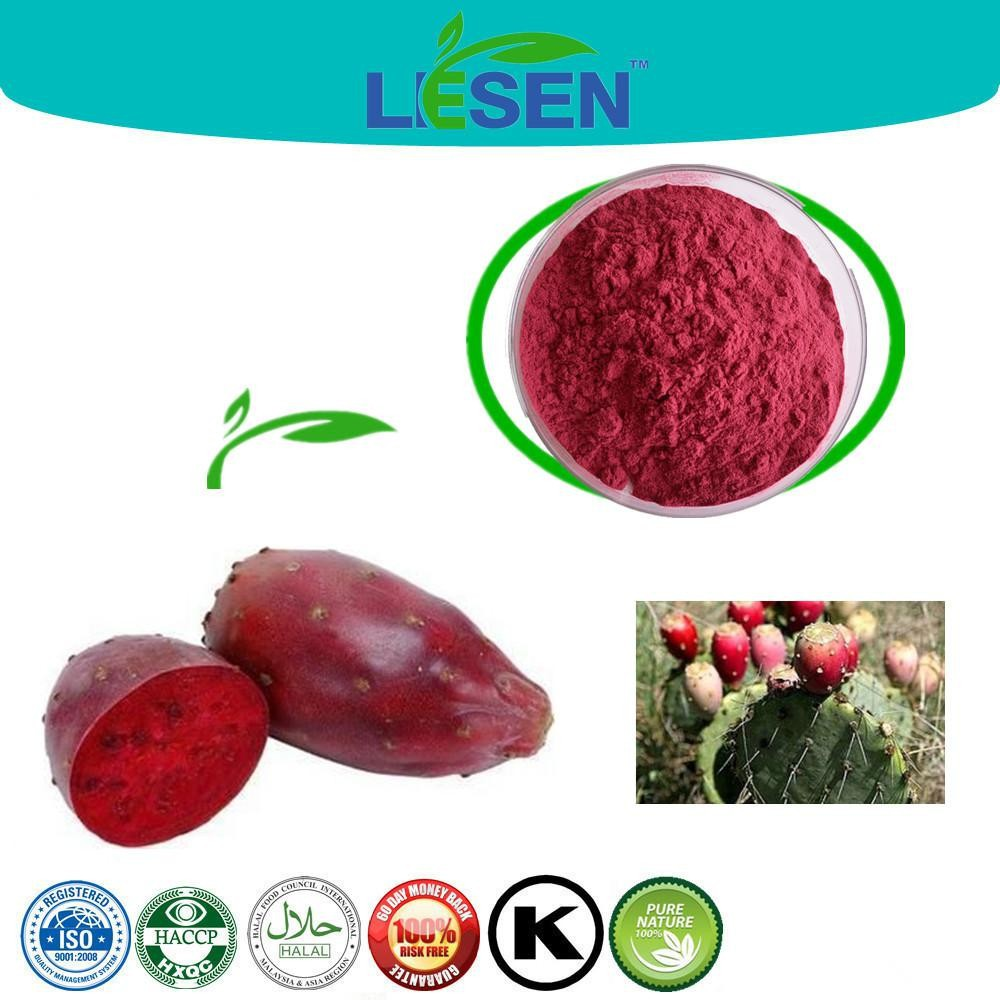 Professional High Quality Nopal Prickly Pear Cactus Powder
