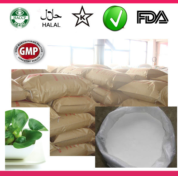 In bulk high quality glucosyl 90% powder stevia plant candy sweetener stevia leaf