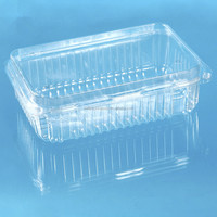 popular pet pp ps pvc clear plastic box with hinged lid