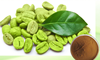 100 Natural High quality Low Price Green Coffee Bean Extract