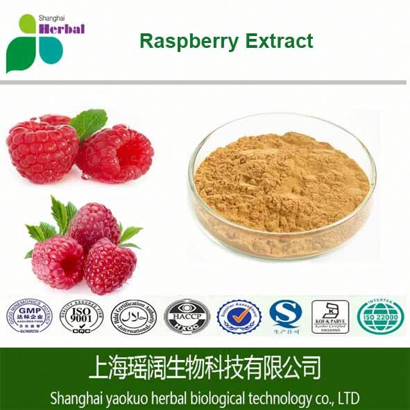 100% Natural Raspberry Extract/Black Rasberry Extract,4% Raspberry Ketone