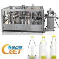 CE Approved 3-in-1 Monobloc Bottle Rinsing Filling Capping Machine / Water Bottling Plant