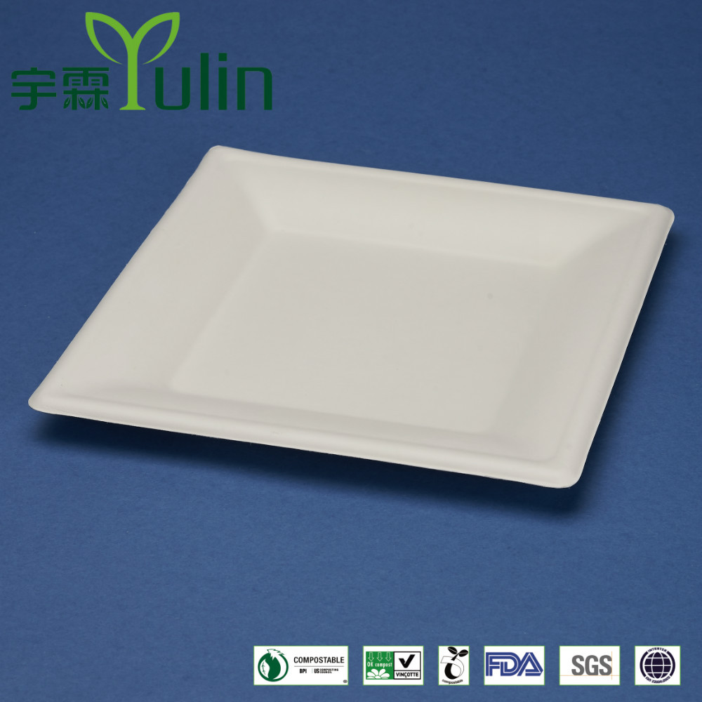 T028 10 inches disposable flate square sugar cane paper plate