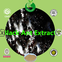 High quality black ant extract powder black ant sex