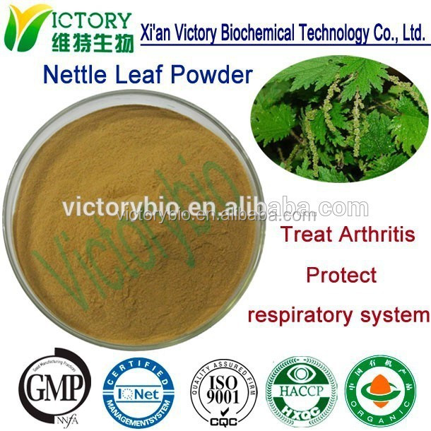 Factory Supply 100% Natural Nettle Root P.E.