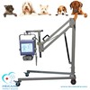 /product-gs/hot-selling-pet-medical-vet-x-ray-table-60394643648.html
