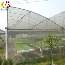 Low Cost Hydroponic Sawtooth Greenhouse For Tropical Area