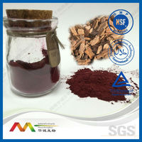 GMP&ISO Pine Bark Extract Proanthocyanidins 95% UV