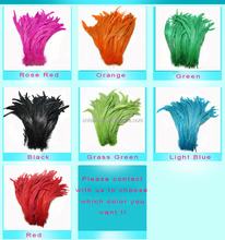 16-18'' Colorful Dyed Rooster Tail Feather for Carnival Costumes