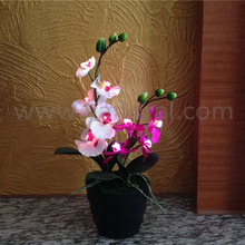 Most popular newest design artificial orchid flower with led lights battery operated flowers with led lights made in China