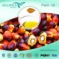 Pure refined cooking Palm Oil wholesale