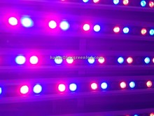 1200mm ultra delgado 36x1w RGB pared LED arandela 24vDC