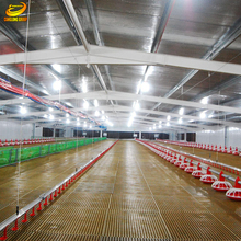Canglong Low Cost Prefabricated Steel Structural Chicken Poultry Shed Design