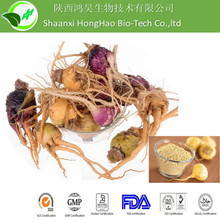 Sex Product Chinese Herbs for Penis 4:1 Maca Root Extract Powder
