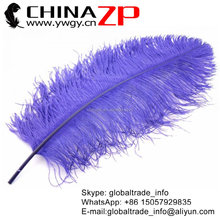 CHINAZP High quality large 60- 65cm Purple Ostrich Feather for wedding decoration
