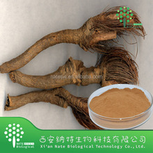 Natural 100% Maral root extract,Maral root powder extract,Maral root P.E.