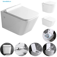 bathroom wall mounting toilet ceramic sanitars one piece rimless wall hung water closet