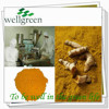 top purity raw material food pigment curcumin extraction plant